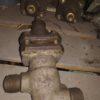 14с17ст DN20 PN10 Клапан запорный стальной цапковый сильфонный