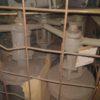 30с41нж DN80 PN16 Задвижка стальная фланцевая  штампосварная